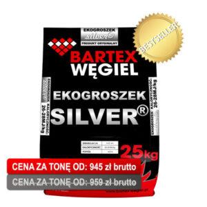 silver-13